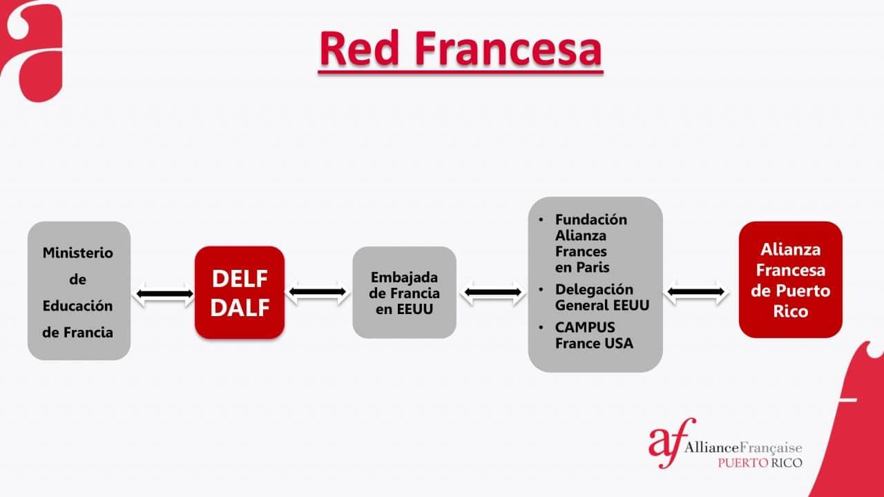 Aprende como funciona la Red de Alianzas Francesas